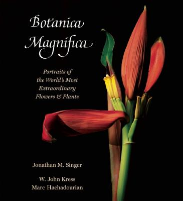 Botanica Magnifica By Singer, Jonathan (PHT)/ Kress, W. John/ Hachadourian, Marc